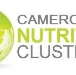 Cameroon Nutrition cluster