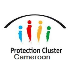 Protection Cluster Cameroon